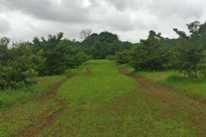 Arwa Farms – A Nature Friendly Destination